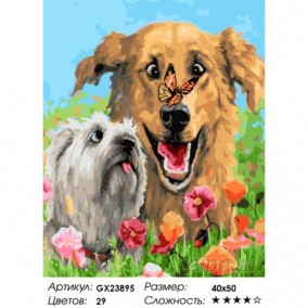 Картина по номерам GX 23895 Собаки 40*50