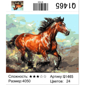 Картина по номерам Q1465 Конь 40*50