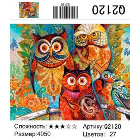 Картина по номерам Q2120 Цветные совы 40*50
