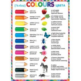 Плакат. Colours (Цвета)